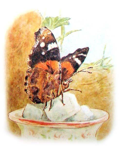 beatrix potter butterfly